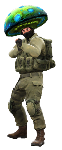 Csgo model png. When changing to the