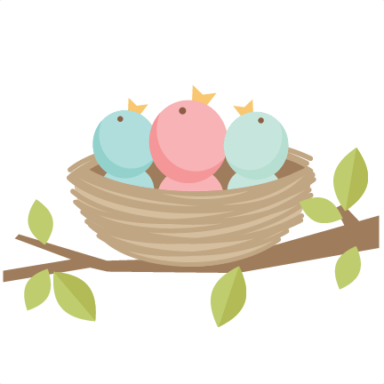 Cute bird png. Nest transparent images pluspng