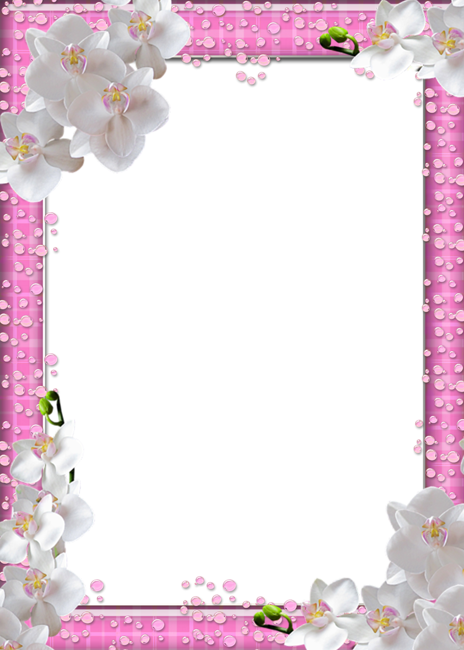 Cute frames png. Pink photo frame with