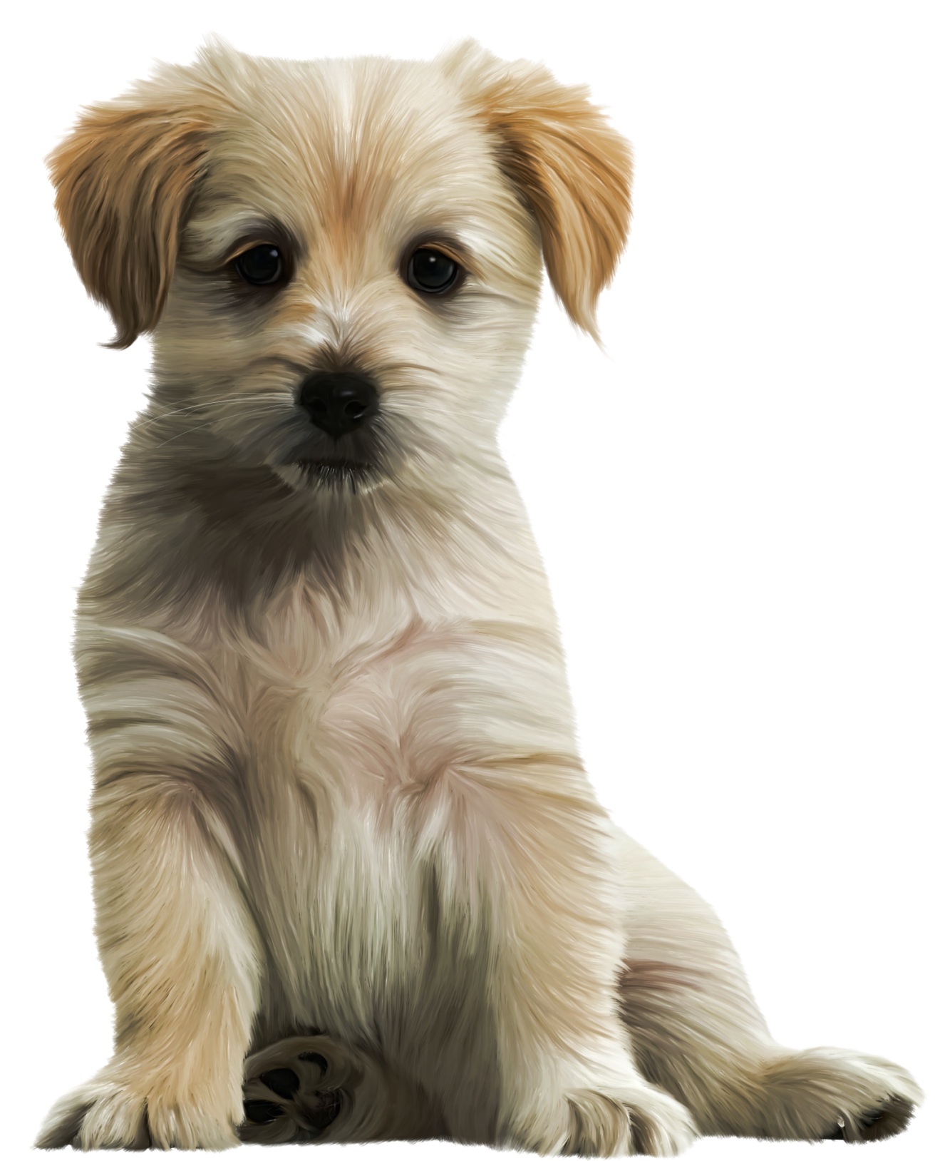 Cute dog png. Puppy clipart image gallery