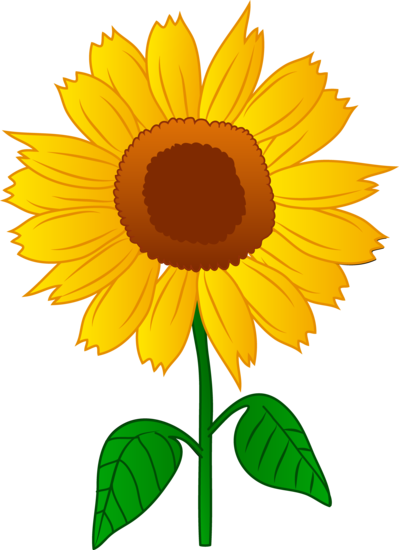 Cute sunflower png. Collection of free folwe