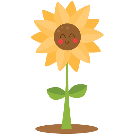 Sunflowers png cute. Sunflower via miss kate