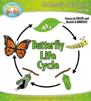 Cycle clipart butterfly. Life zip a dee