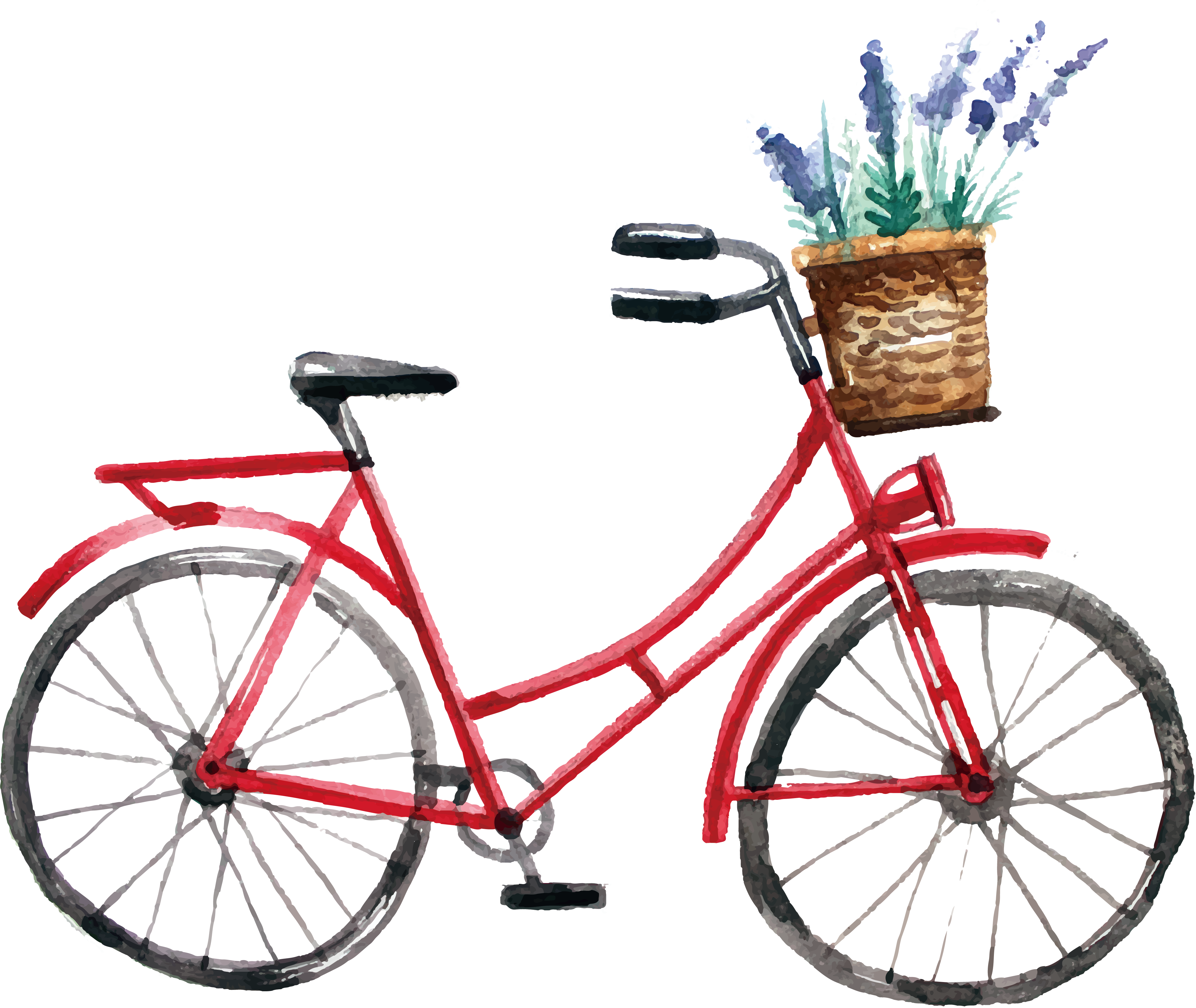 Cycle vector bicycle design. Watercolor painting cycling bike