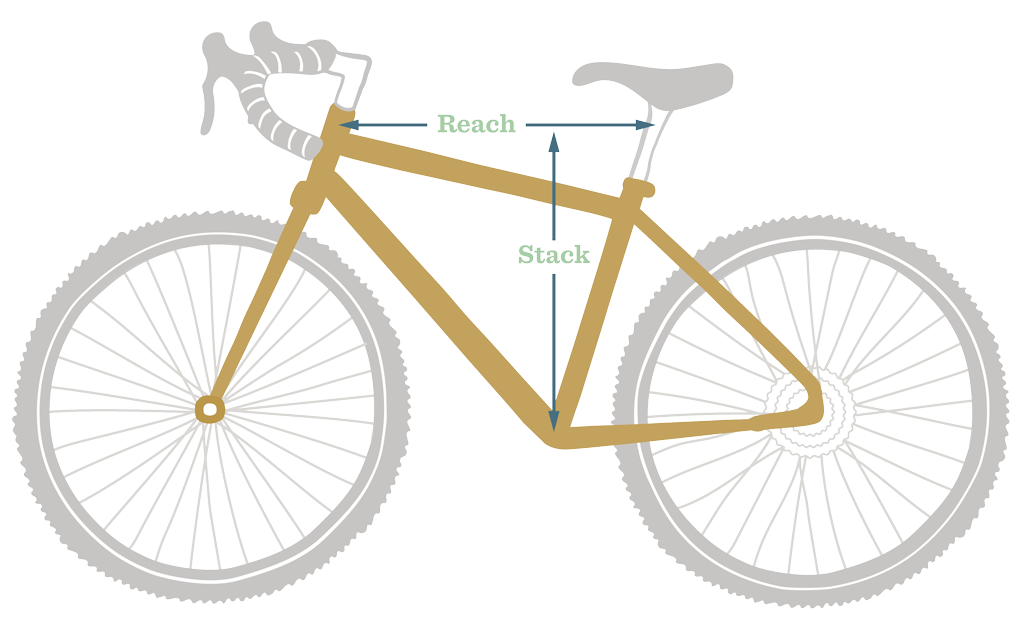 Cycle vector ladies. What s the difference