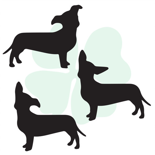 Dachshund clipart chiweenie. Silhouette at getdrawings com