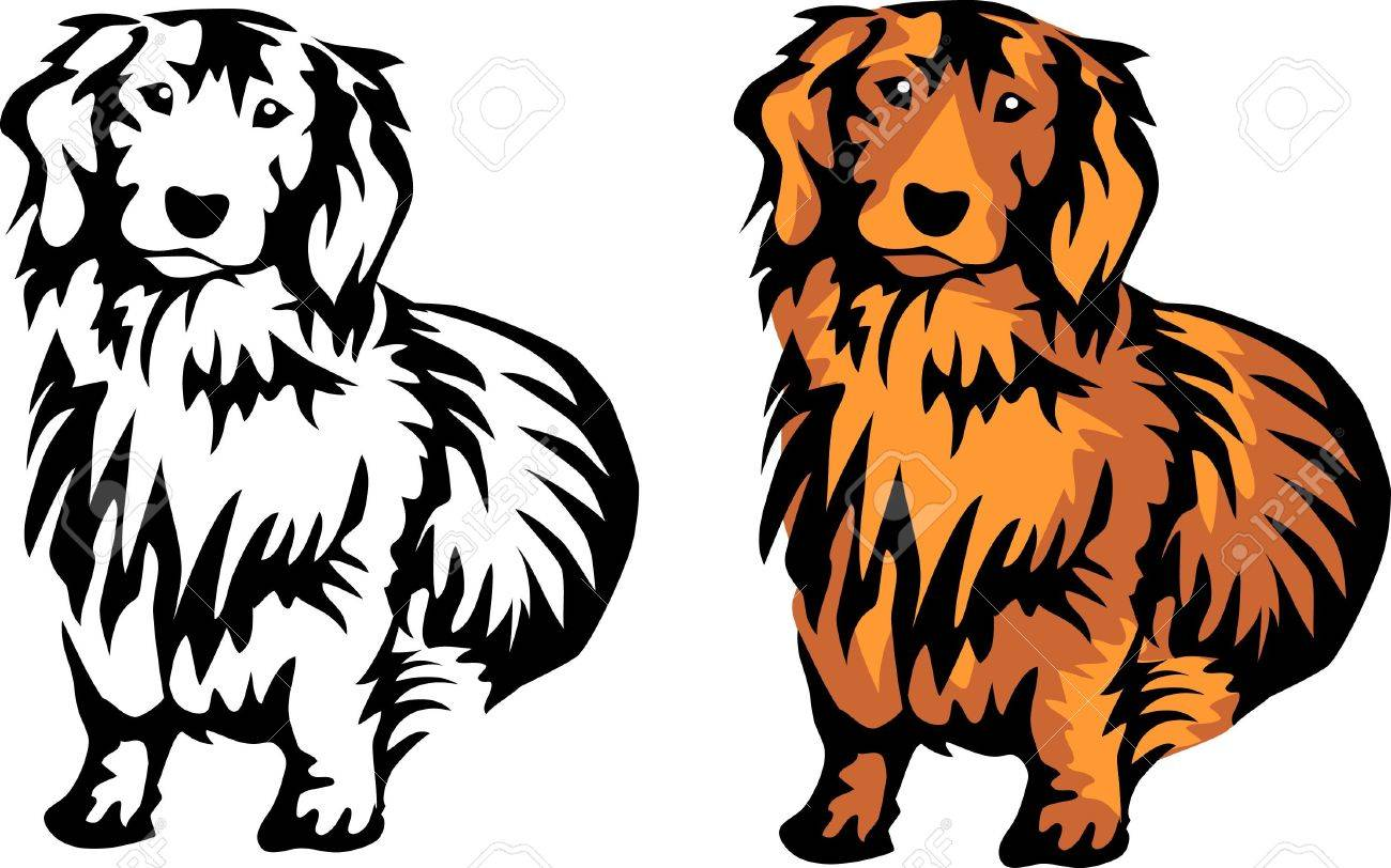Dachshund clipart dotson. Weiner dog at getdrawings
