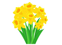 Search results for clip. Daffodil clipart image royalty free library