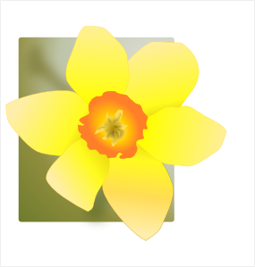 Clip art at clker. Daffodil clipart bloom royalty free download