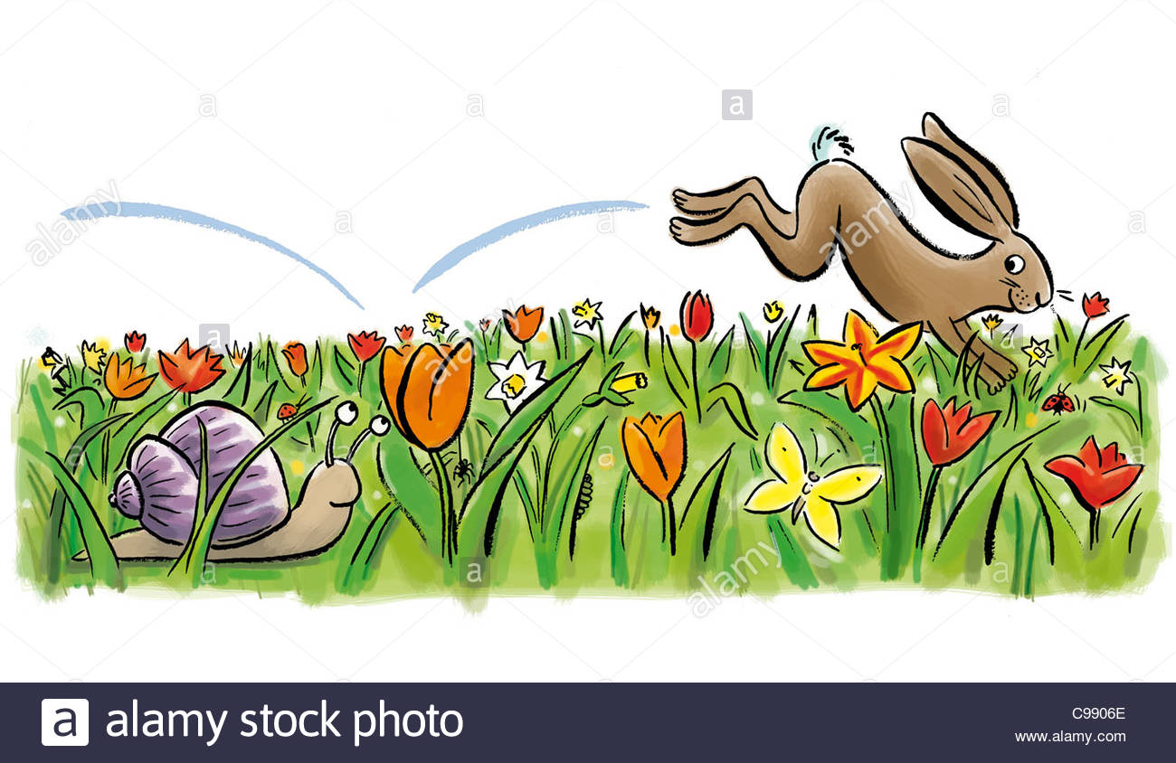 Frhlingswiesetulpen hare snail stock. Daffodil clipart easter picture transparent download