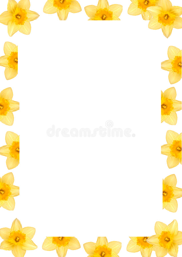 Daffodil clipart easter. Frame stock photo image image library download
