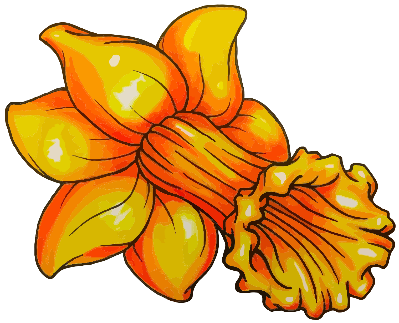 Album on imgur . Daffodil clipart lily picture free library