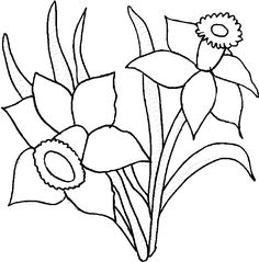 Coloring pages misc pinterest. Daffodil clipart printable graphic royalty free
