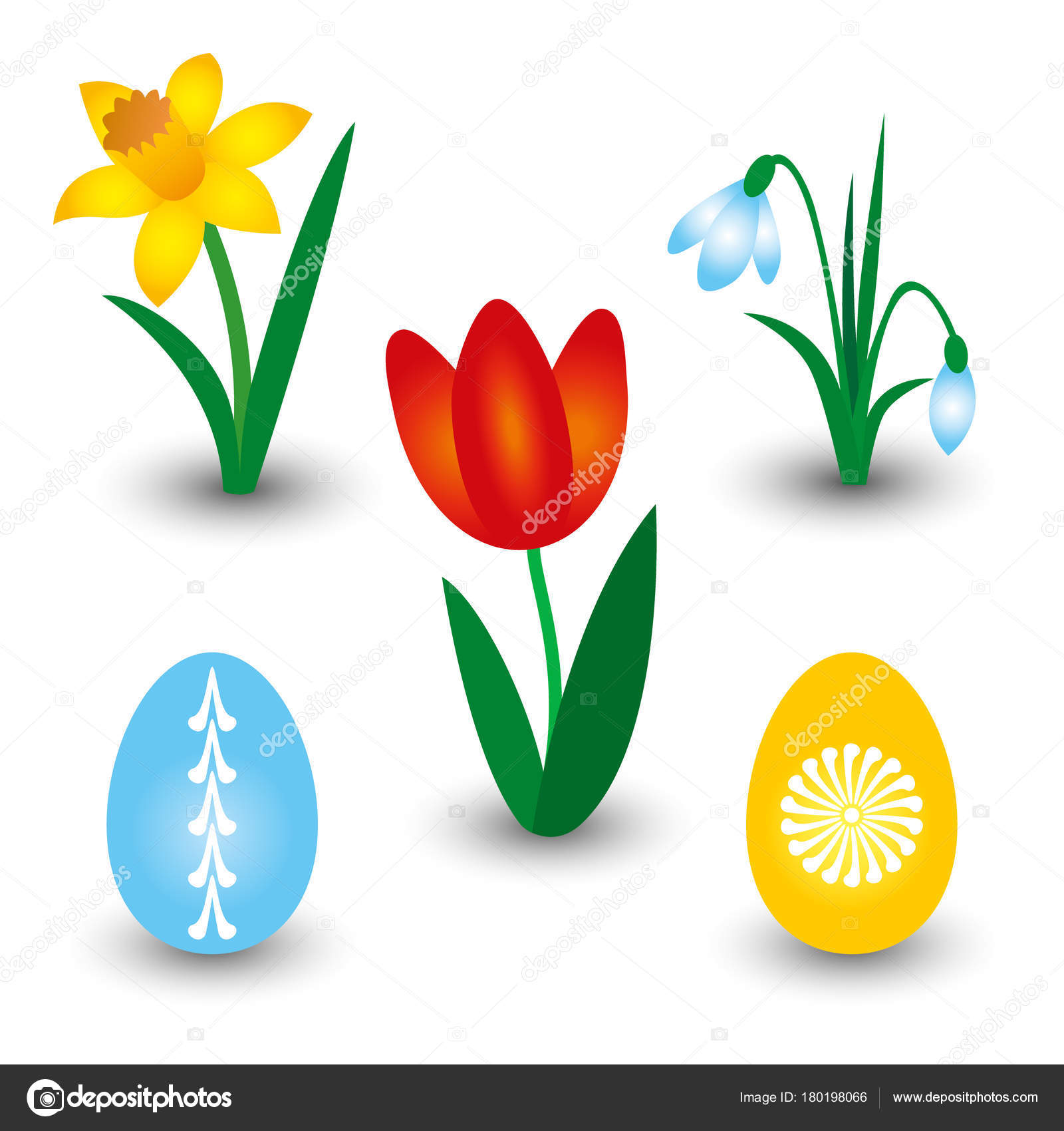 Vector set of three. Daffodil clipart tulip svg transparent library