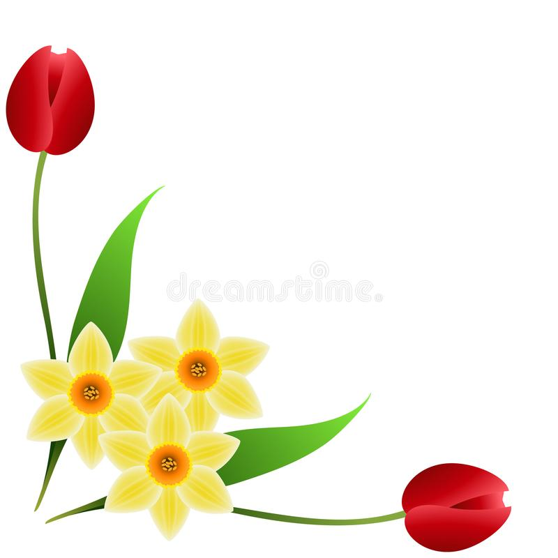Daffodil clipart tulip. Corner with red tulips graphic black and white