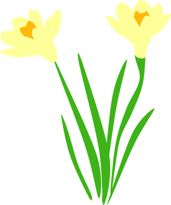 Daffodil clipart wind. Field free on dumielauxepices