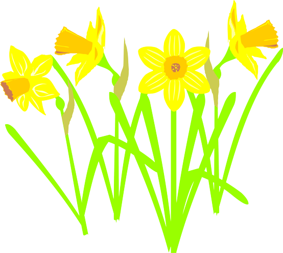 February czygyny s weblog. Daffodil clipart wind picture black and white download