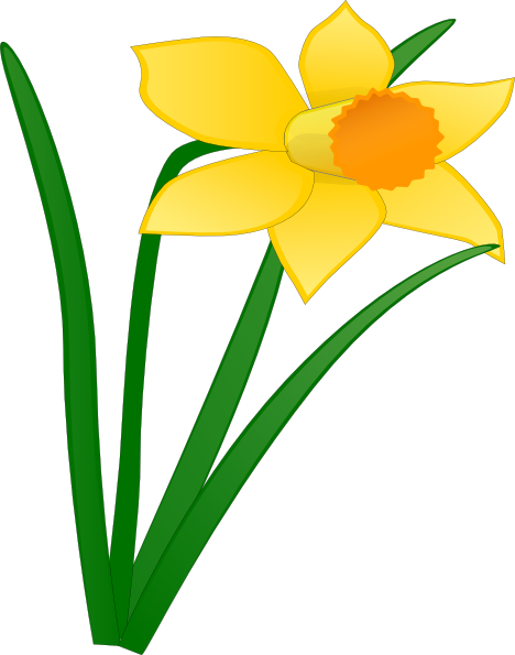 Daffodil clipart yellow daffodil. Flower clip art at