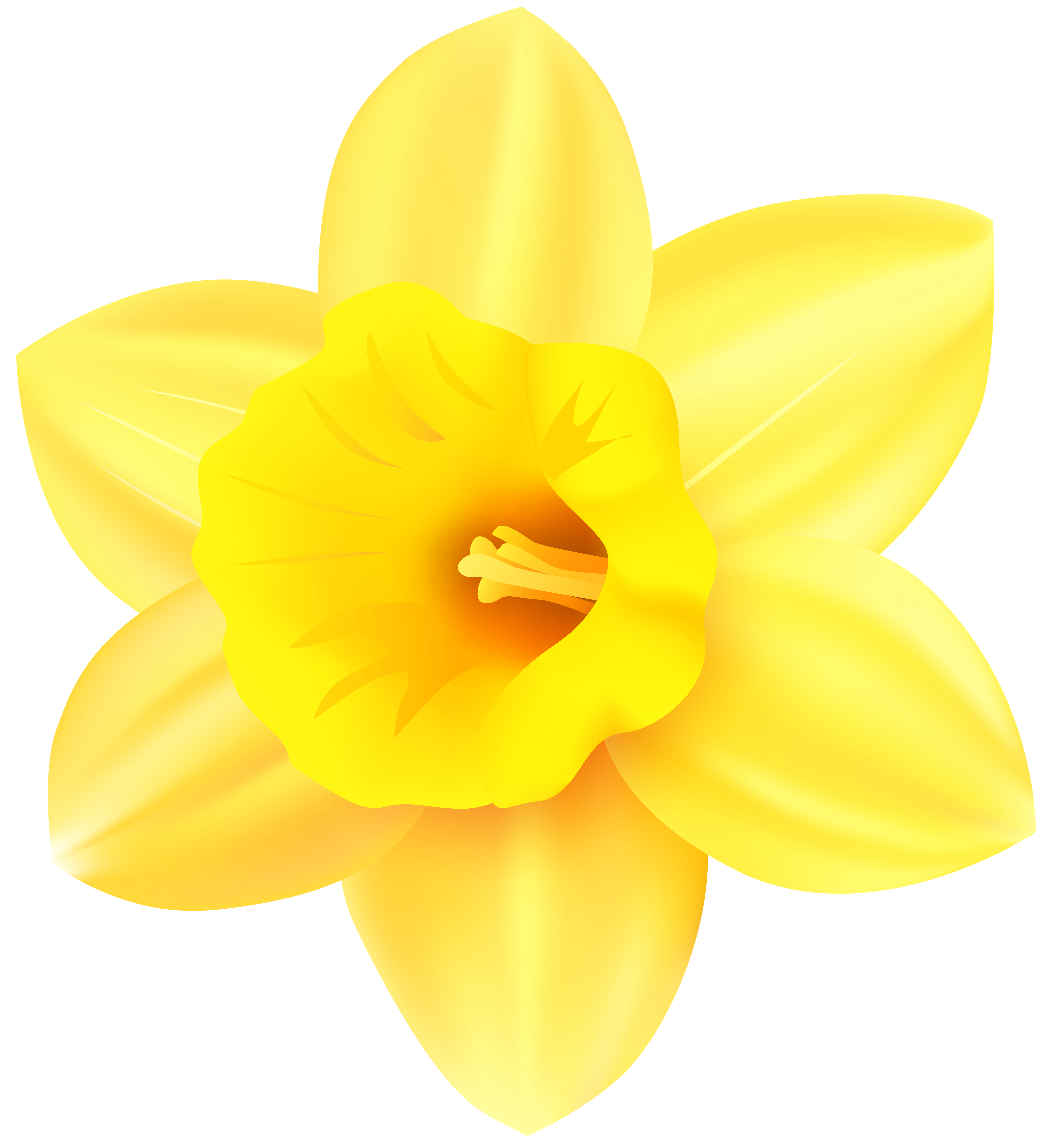 Png transparent clip art. Daffodil clipart yellow daffodil png stock