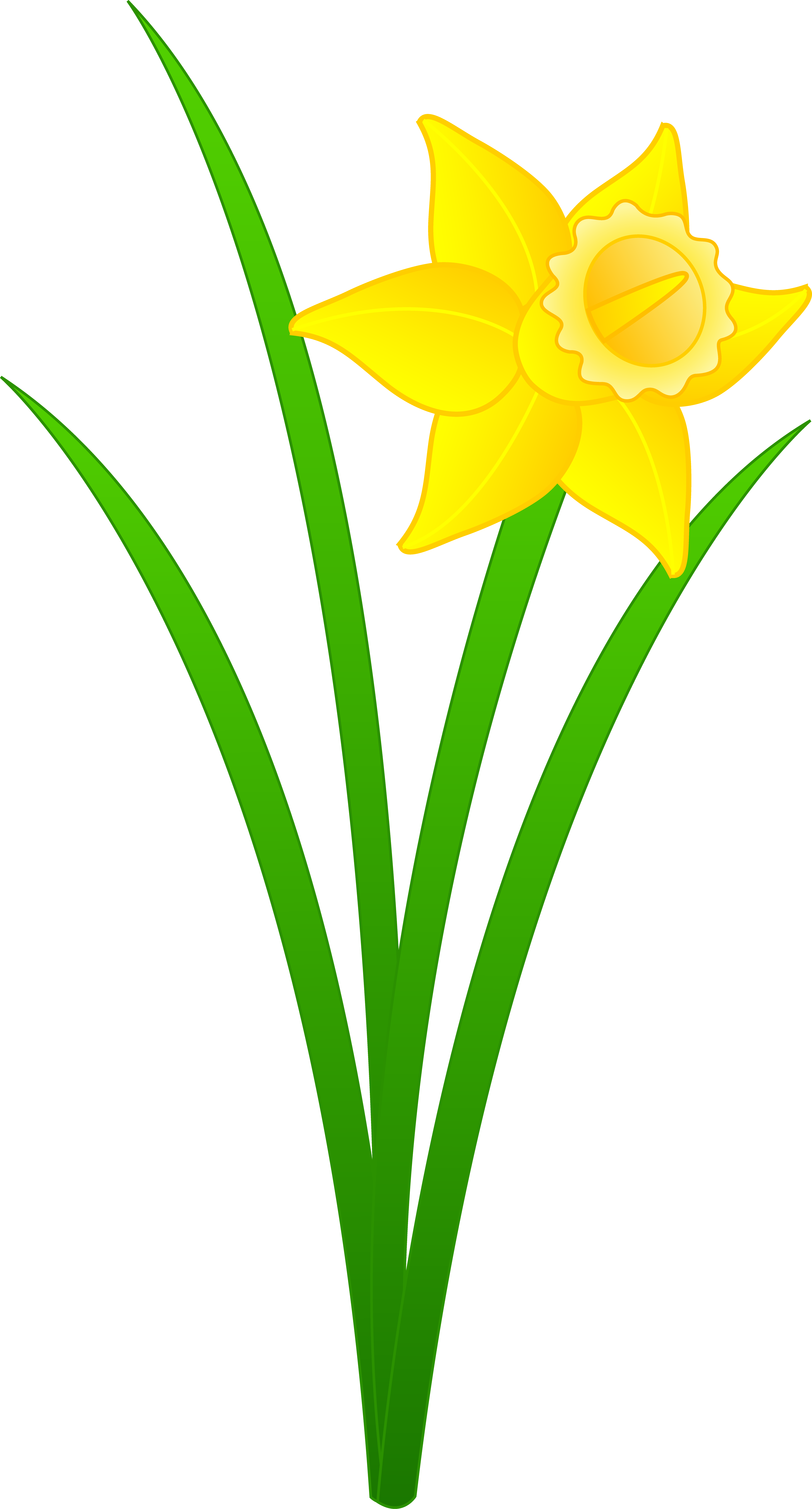 Flower panda free images. Daffodil clipart yellow daffodil clipart black and white