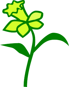 Daffodil vector. Clipart svg free on