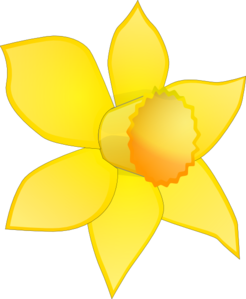 Daffodil vector narcissus flower. Clipart at getdrawings com