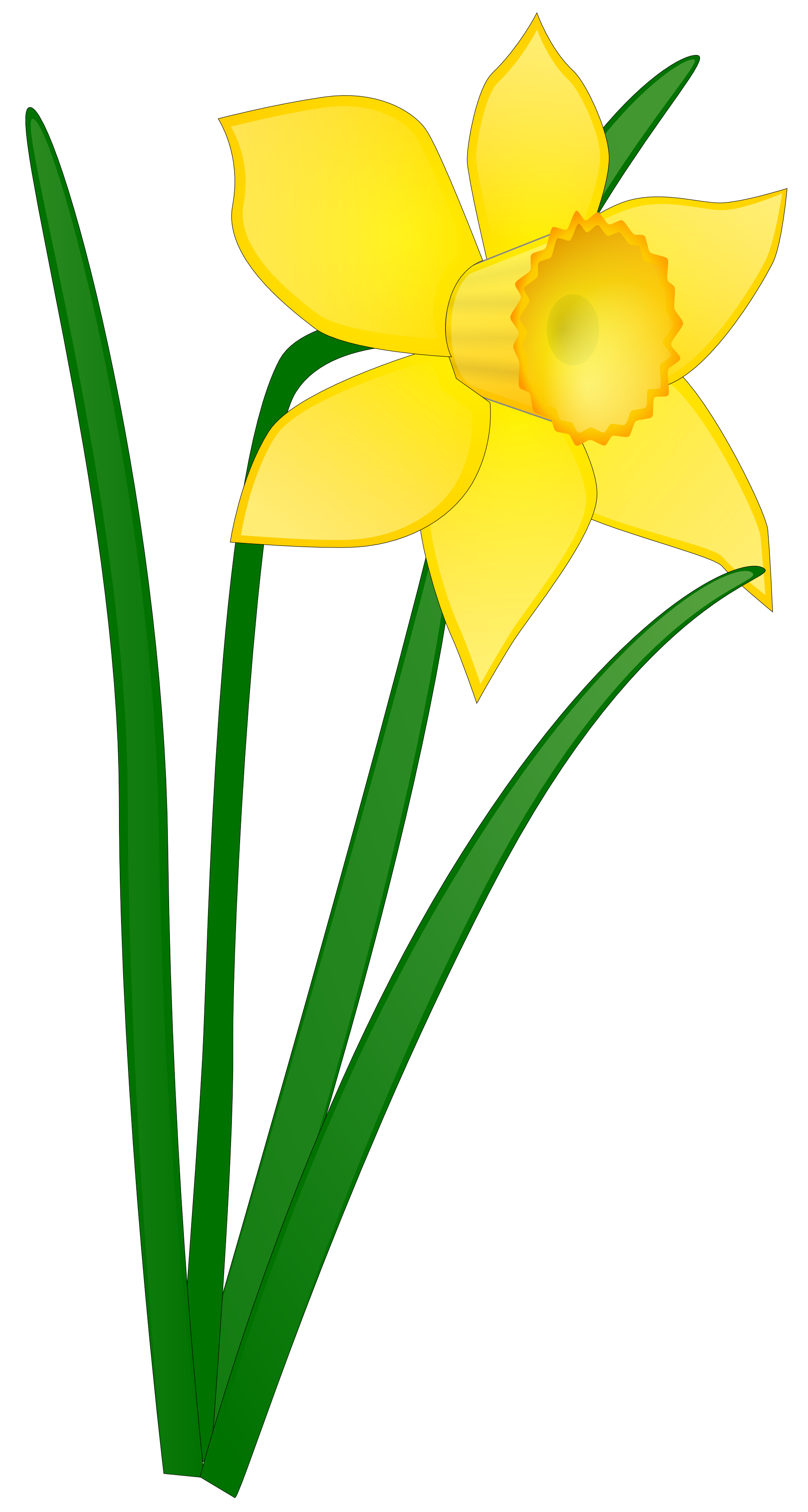 Flower clip art panda. Daffodil clipart bloom royalty free stock