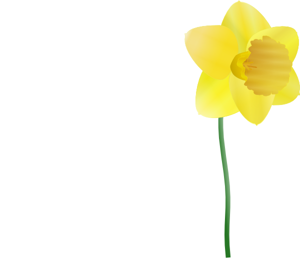 Clip art at clker. Daffodil clipart bloom banner freeuse download