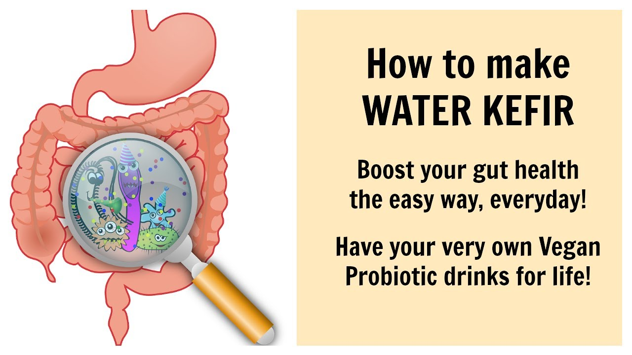 Dairy clipart probiotic. How to make free