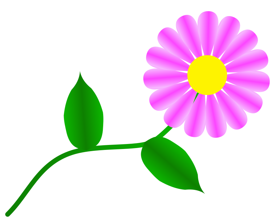 Daisy clipart bloom. Free images download clip