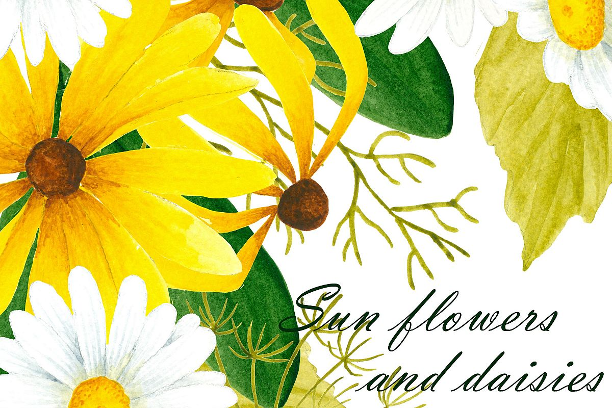 Daisies clipart daisy petal. Black eyed susan and