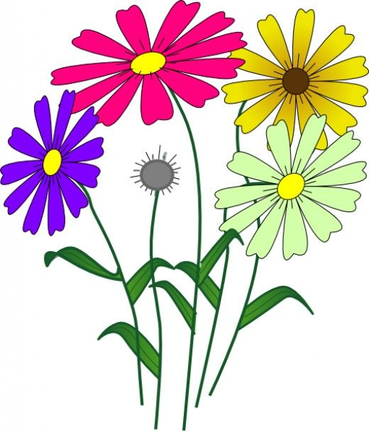 Daisies clipart four flower. Clip art collection of