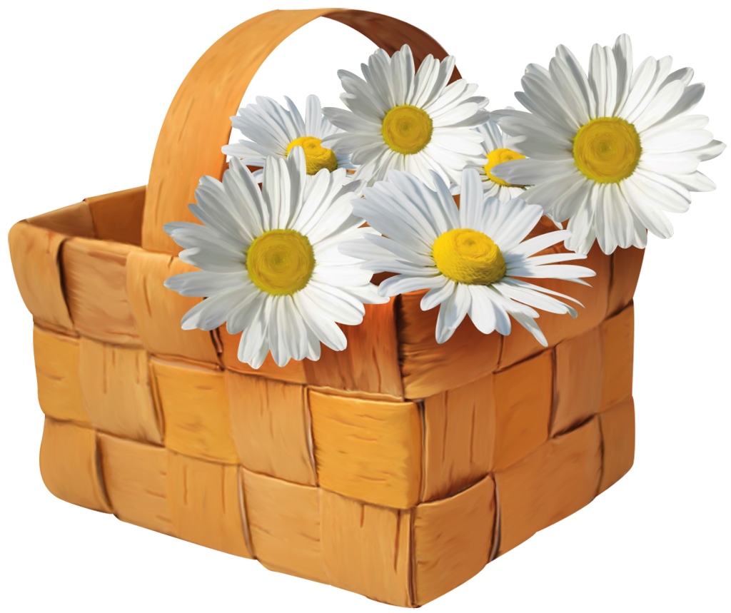Daisies clipart four flower. Large transparent basket with