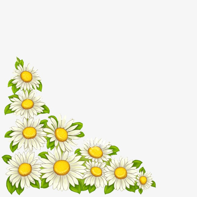 Daisies clipart marguerite daisy. Illustration the big picture
