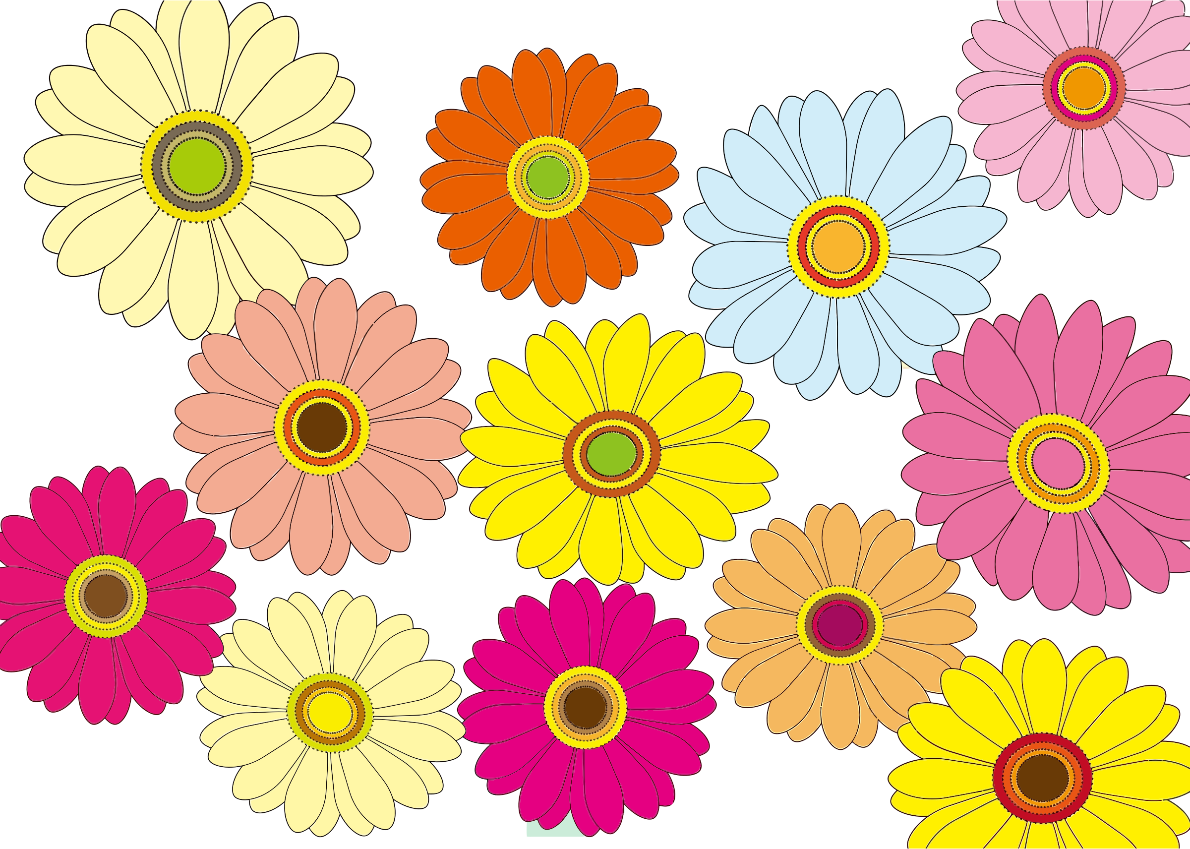 Daisies clipart multicolor. Multicolored flowers big image