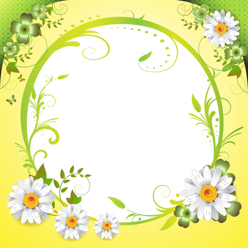 Daisies clipart multicolor. Fond printable background frame