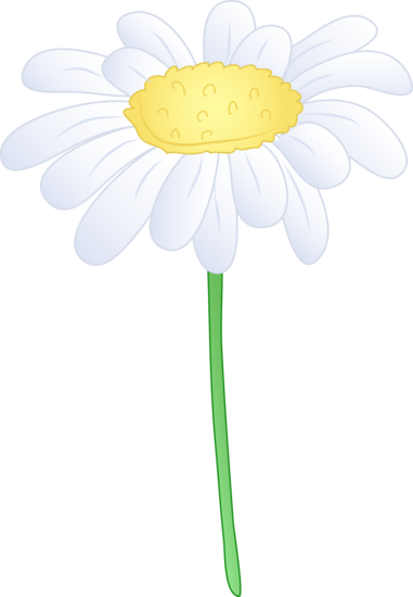 Daisy clipart long stem flower. Single white free clip