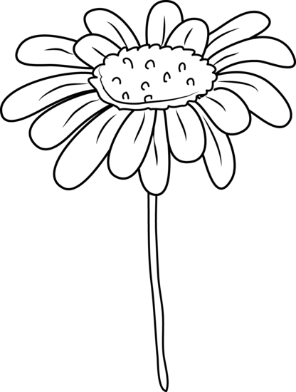 Daisy flower coloring page. Daisies clipart scene banner library download