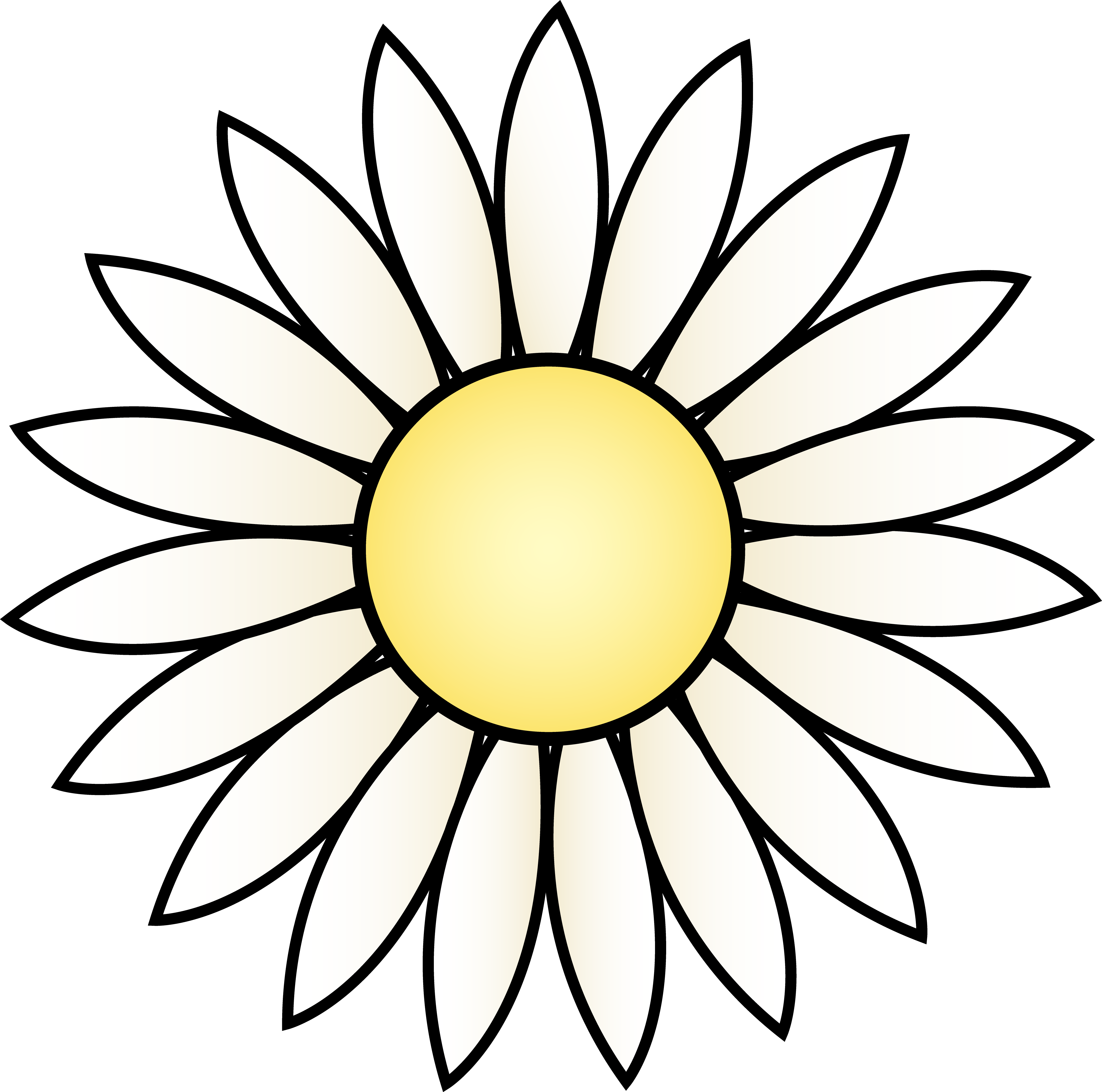 White daisy flower free. Daisies clipart scene clip free library