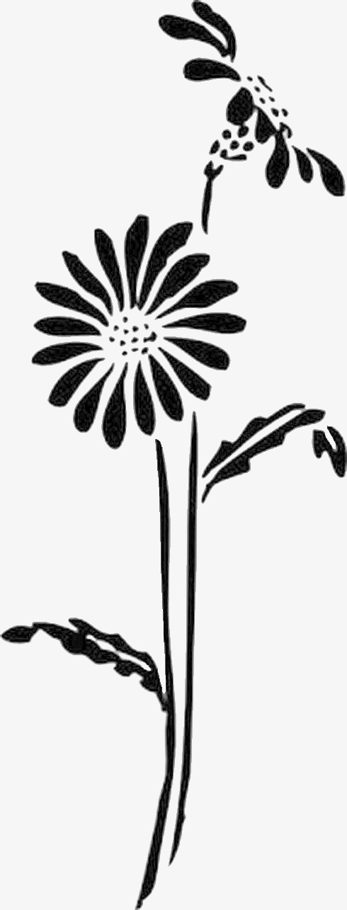 Daisy clip art plant. Daisies clipart silhouette jpg black and white library