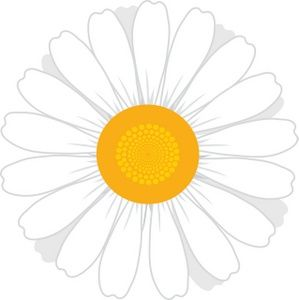 White flowers clip art. Daisies clipart svg black and white library