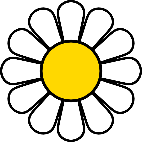 bouquet vector daisies