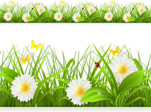 Daisy clipart banner. Spring flowers border clip