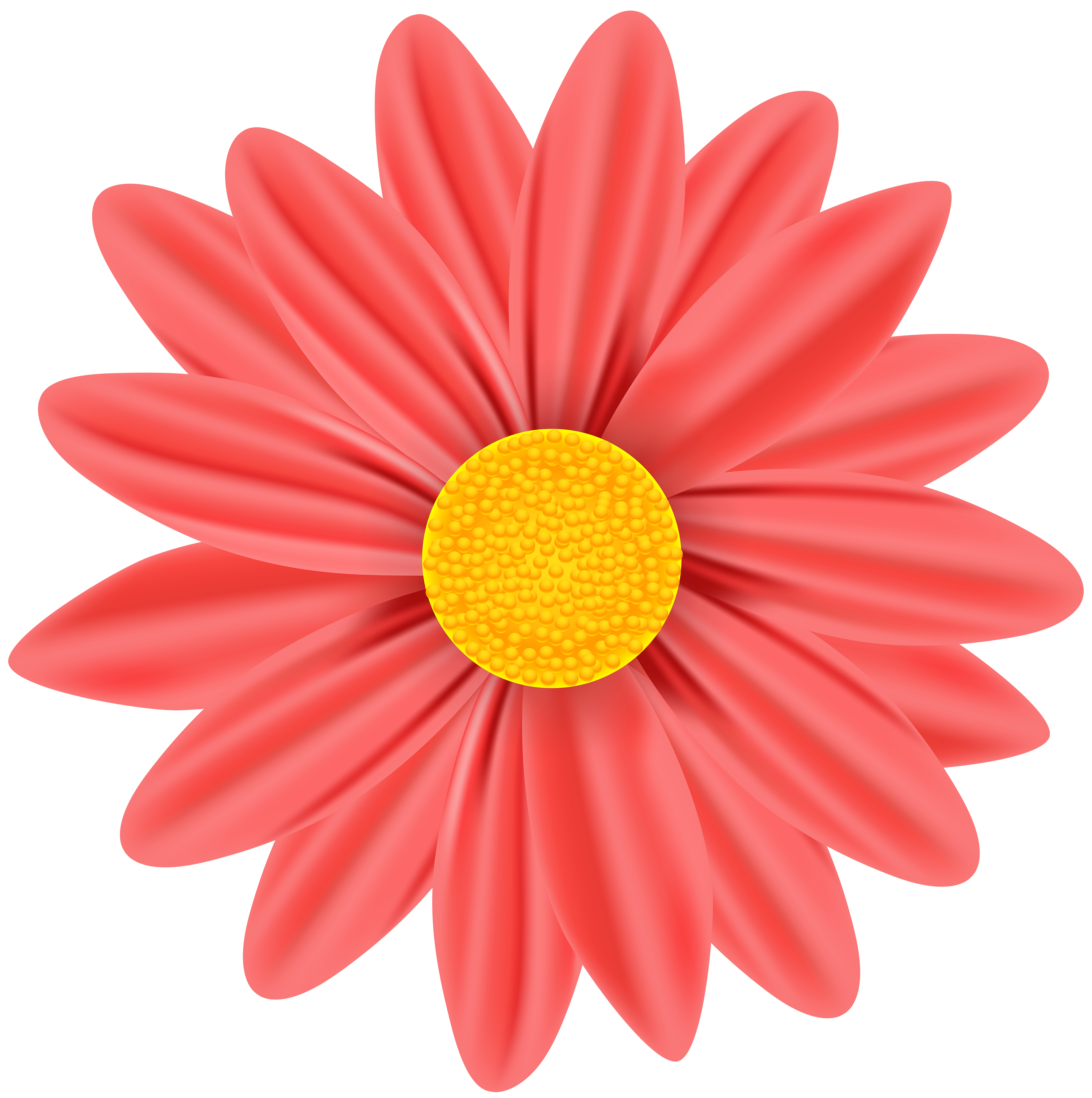 Daisy clipart bloom. Red png clip art