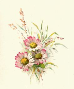 Daisy clipart daisy bouquet. Vintage image free digital