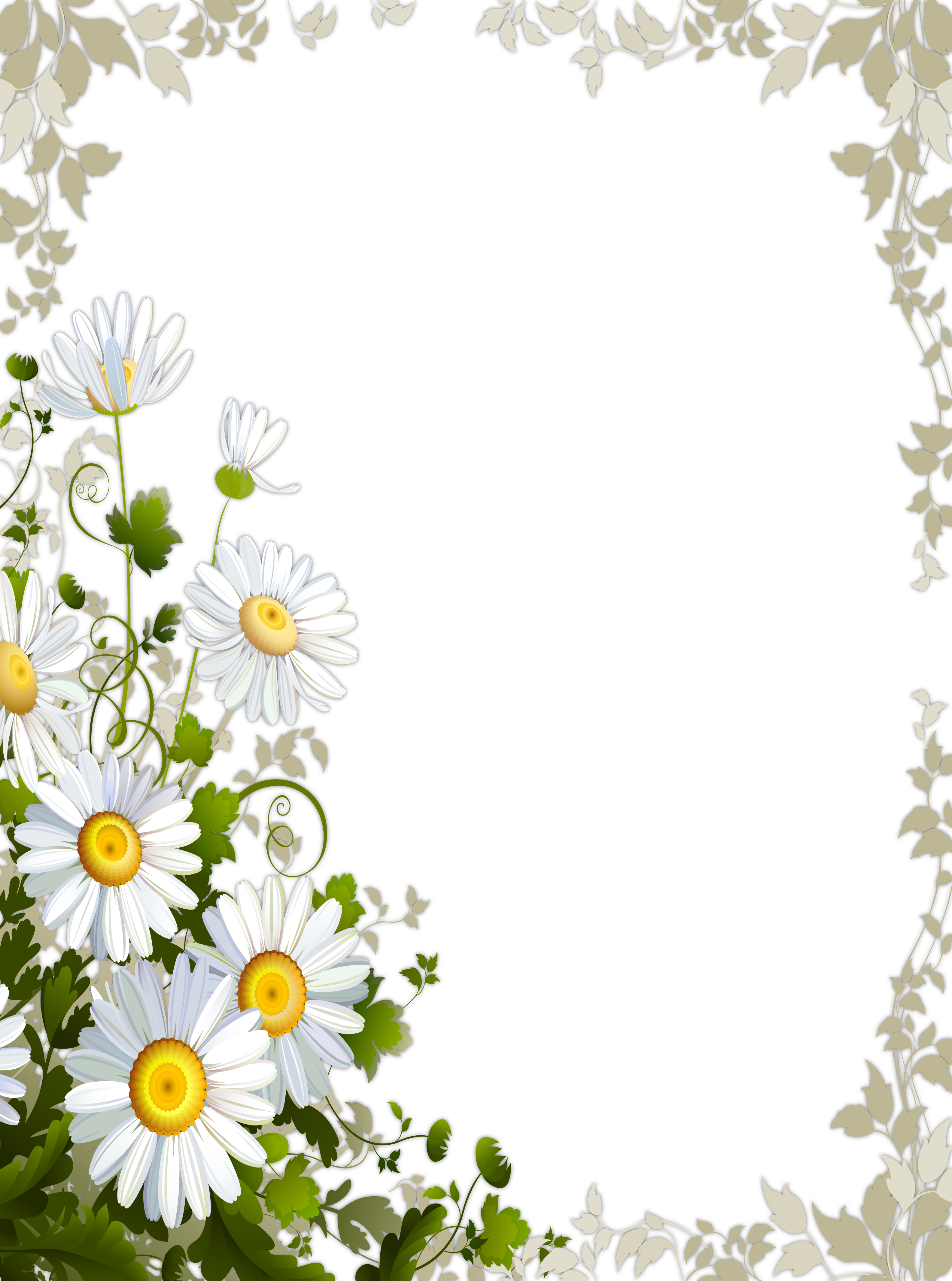 Transparent with daisies gallery. Daisy clipart frame banner free
