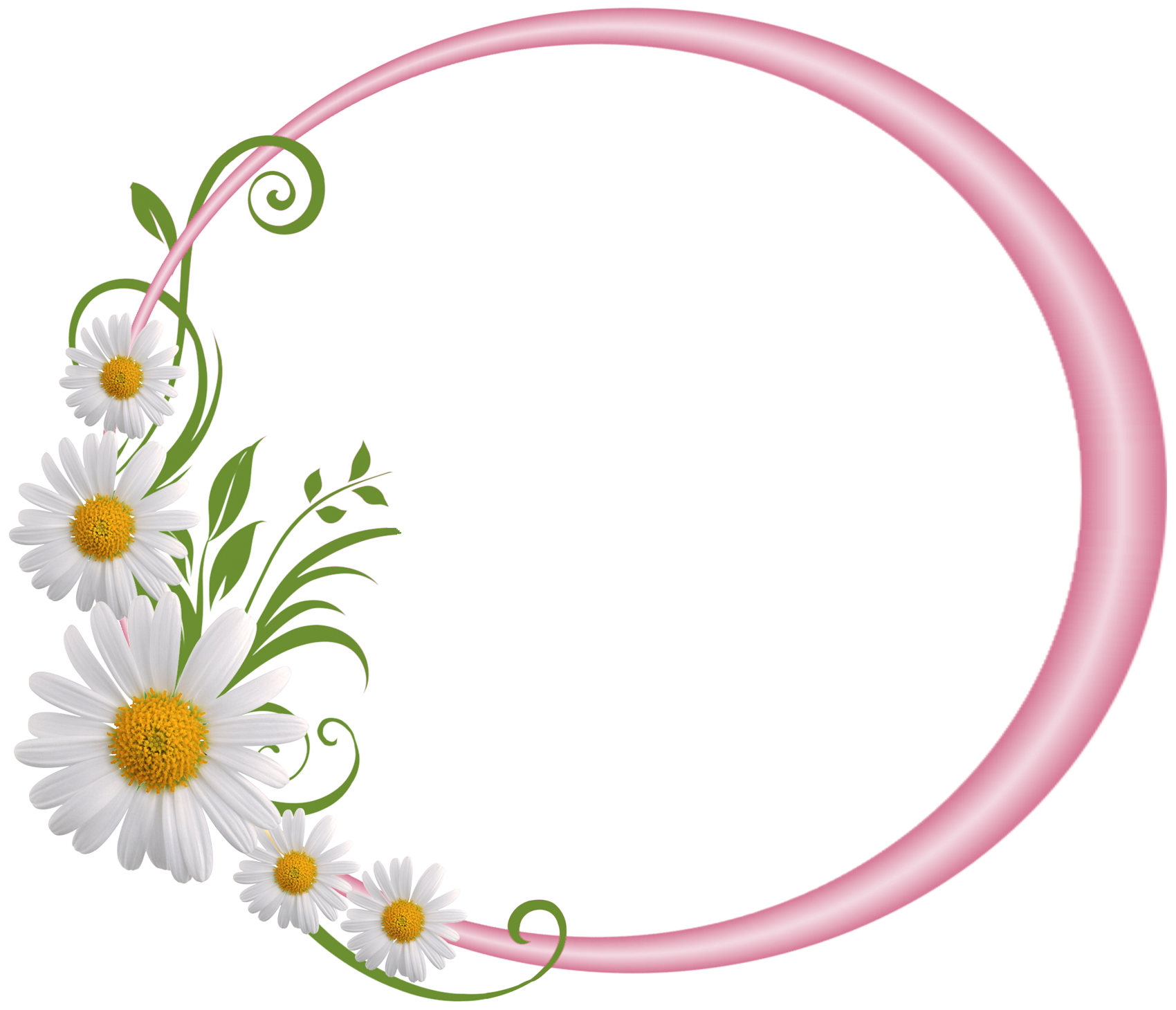 Daisy clipart frame. Pink round with daisies
