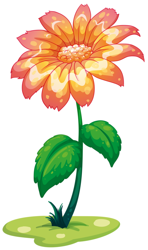 Daisy clipart plant insect. Pin by m a