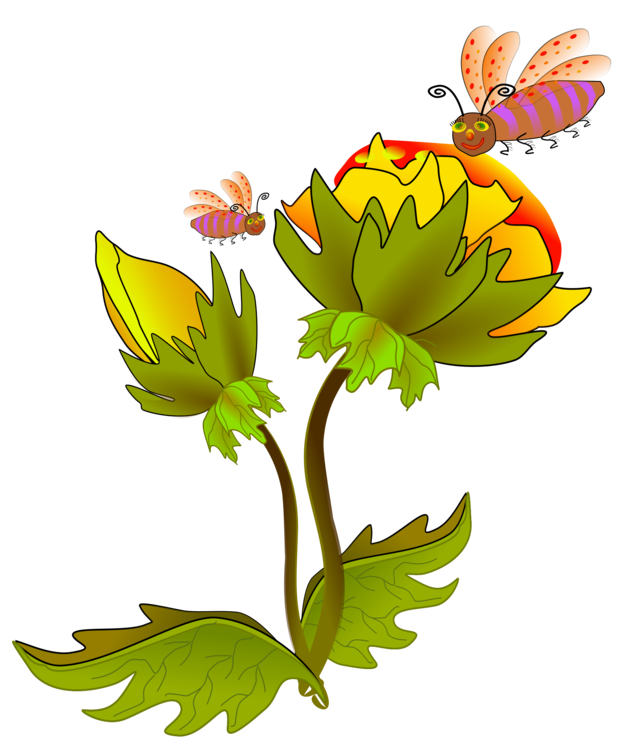 Daisy clipart plant insect. Honey bee beehive flower