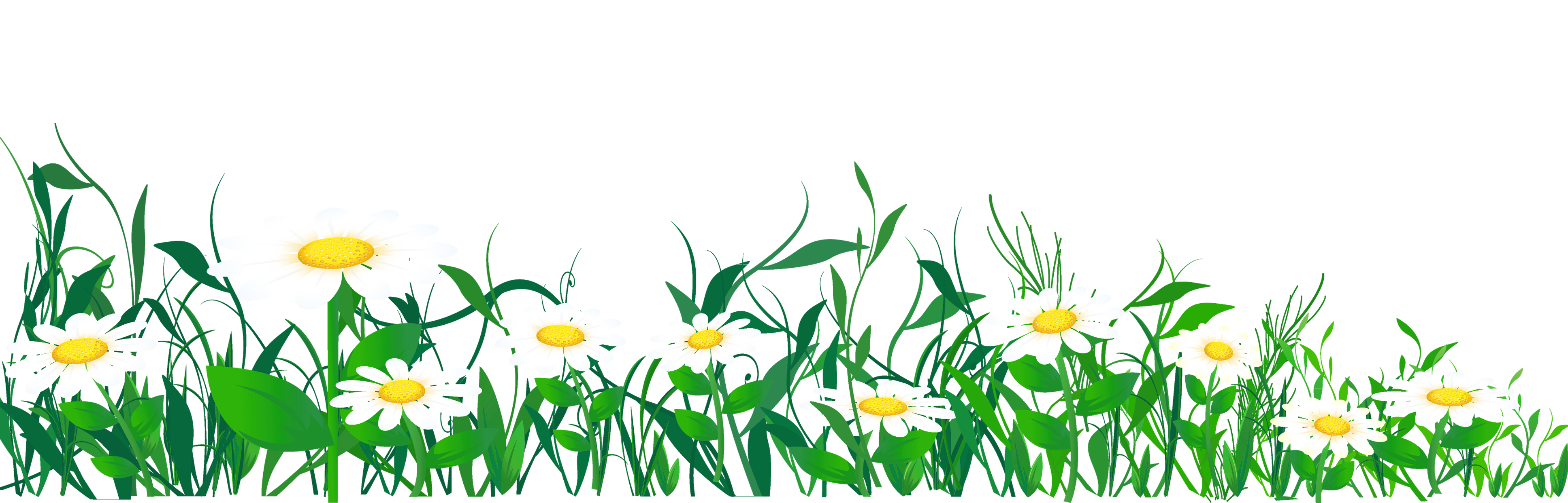 Free transparent cliparts download. Daisy clipart frame svg library